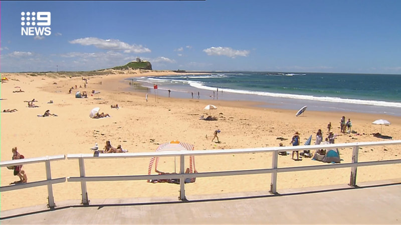 Beach closed due to possible shark threat