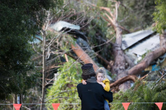 Six-year-old Mirrah looks at the damage after three huge trees landed on the roof of the Monbulk Aquatic Centre.