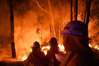 Volunteers work through the night  to prevent a flare-up from crossing the Kings Highway between Nelligen and Batemans Bay.