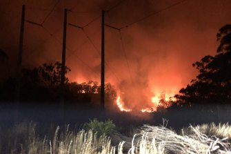 A large fire burning under powerlines near Batemans Bay in early January.