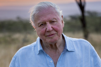 Sir David Attenborough said the 'moment of crisis has come'.