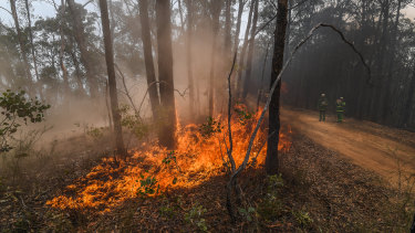 DELWP officers make use of milder conditions on Monday to burn containment lines at the Marthavale-Barmouth fire north of Bairnsdale.