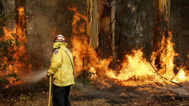 Man charged for lighting NSW bushfire to protect cannabis crop