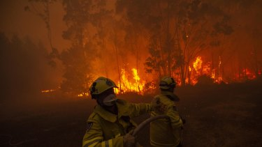 Local firefighters battle a fire at Mangrove Mountain in NSW.