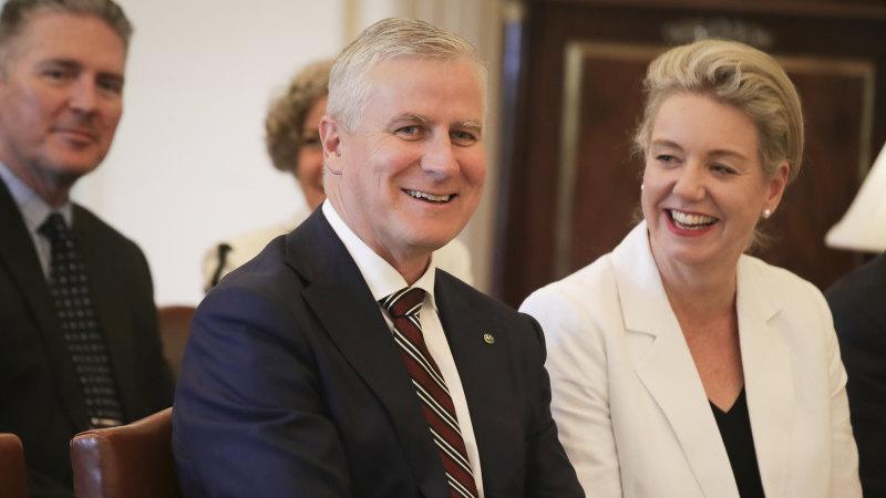 Nationals leader backs embattled McKenzie, says declarations were made