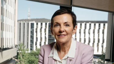 Small Business Ombudsman Kate Carnell said there is a widening gap between the businesses that did well during COVID and have recovered and businesses still struggling.