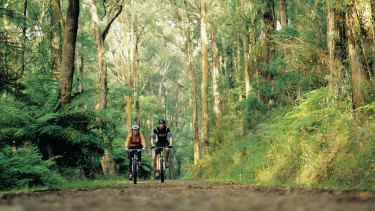 The Health Minister says the ban on travel is designed to stop Melburnians visiting tourist spots such as the Dandenong Ranges.