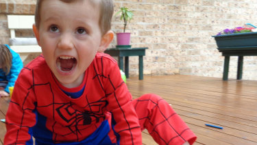 William Tyrrell, who vanished in 2014, dressed in his Spider-Man suit.
