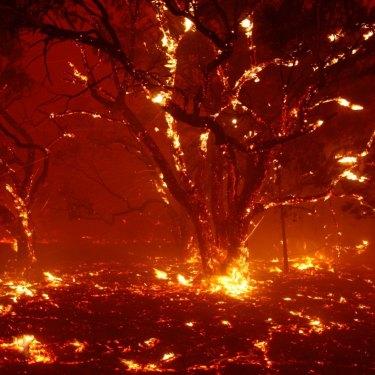 Spot fires breaking along the Monaro Highway near Bredbo on February 1.