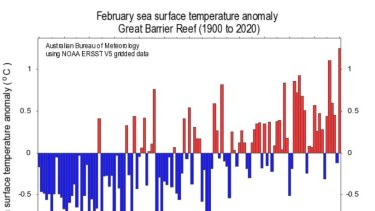 Sea-surface temperatures reached record-high levels on the Great Barrier Reef, topping those in 2016 and 2017 when there was mass coral bleaching.