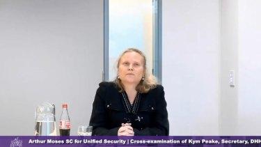 Health Department boss Kym Peake during the hotel quarantine inquiry.