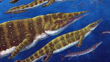 An artist's depiction of Gunakadeit joseeae, asharp-nosed thalattosaur.